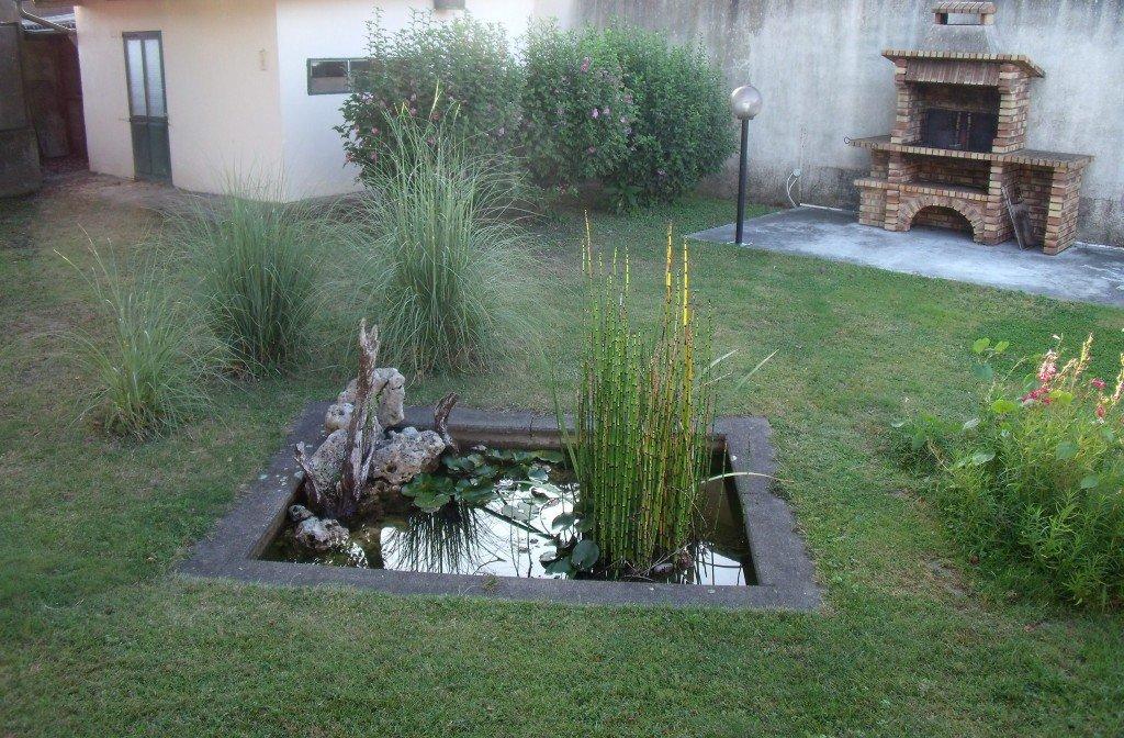 N realisation d un bassin d environ 16000l l 39 aquarium - Leroy merlin jardin espana vitry sur seine ...